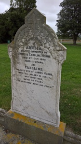HORNE Amelia 2